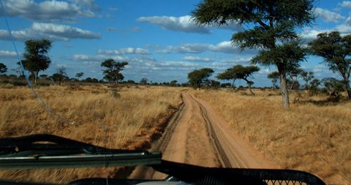 "A ""good"" road in the Kalahari"